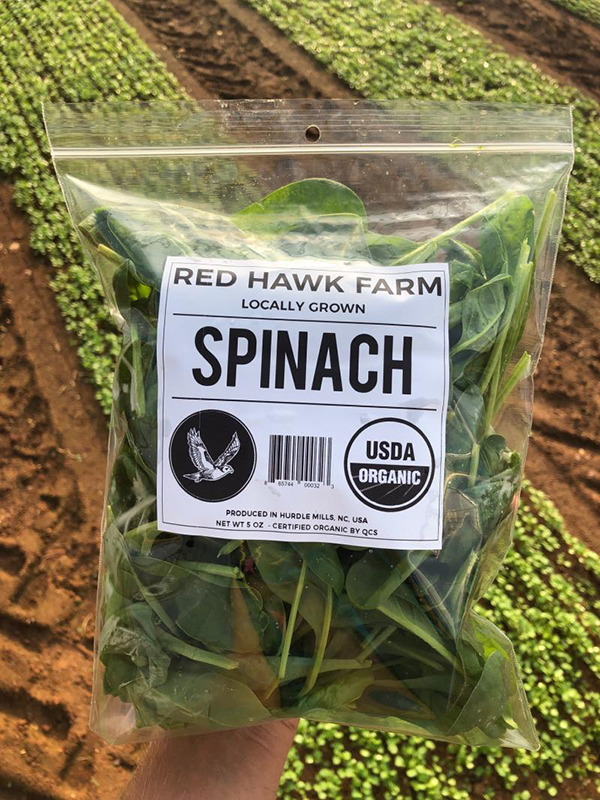 Organic Spinach - LOCAL