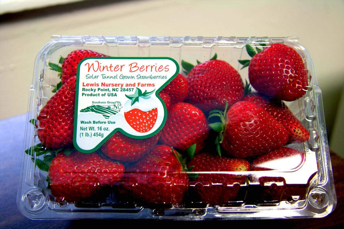 Strawberries - LOCAL